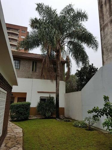 poda de palmeras,arboles,arbustivo/enredadera. en c.a.b.a