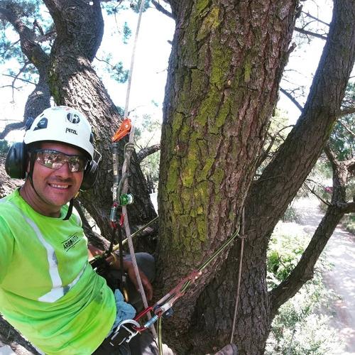 podas de árboles de altura,palmeras,tala, rescate de drones.