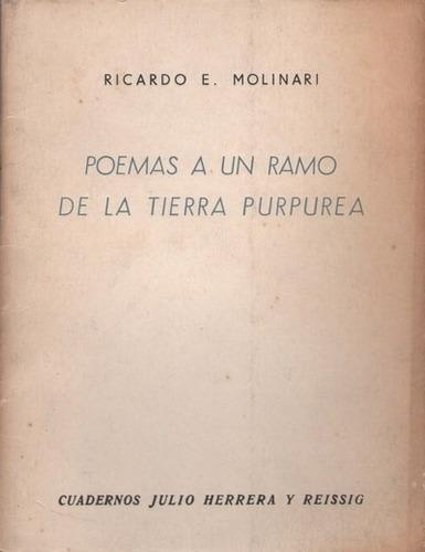 poesia argentina ricardo molinari 1ª edicion uruguay raro 59
