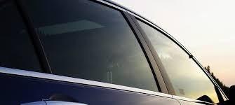 polarizado para auto