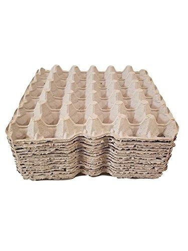 pollo biodegradable huevos planos bandejas de huevos cart