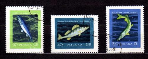 polonia 1958 * peixes marinhos