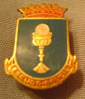 popei.- pin de escudo gallego