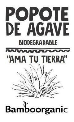 popote biodegradable fibra agave 500 popotes ecologicos