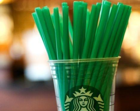 popotes biodegradables ecologicos 3000 piezas 26 cms largo
