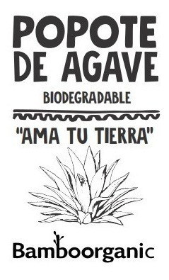 popotes ecologico biodegradable mayoreo agave 8000 popotes