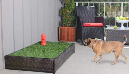 porch potty premium-tapete perros-entrenamiento cesped auto
