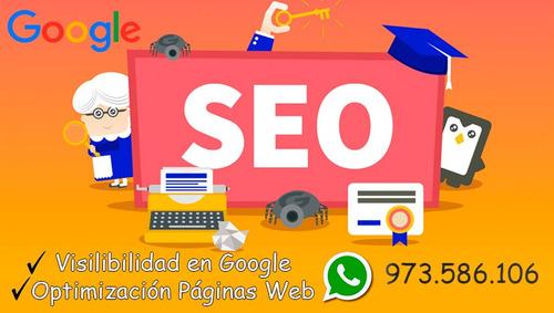 posicionamiento web en google - seo profesional