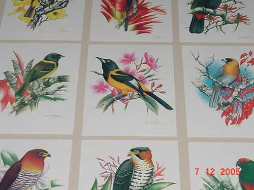 postais com cartões