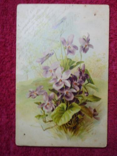 postal antigua de ramilletes de flores moradas del año1905