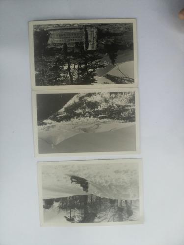 postales antiguas parque nacional conguillio.
