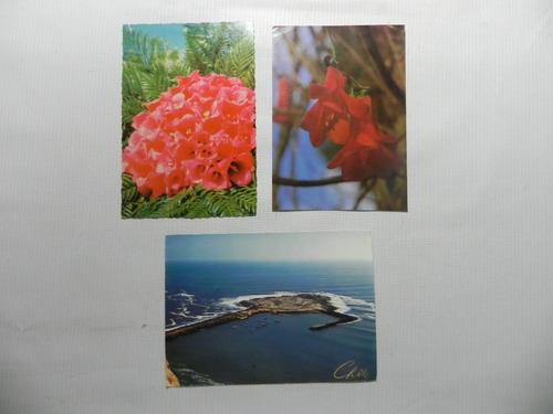 postales arica y copihues chile (3)