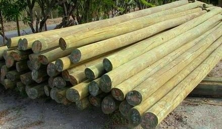 Poste tratado cca madera tratada curada de calidad - Postes de madera tratada ...