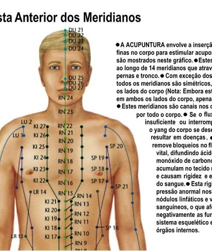 poster 65x100cm rotas energia pontos meridianos acupuntura