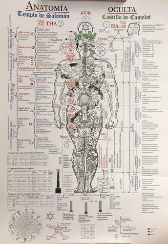 poster anatomia oculta