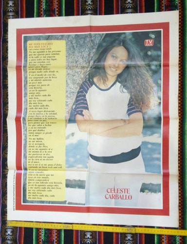 poster doble/ pedro y pablo/ celeste carballo/tv guía