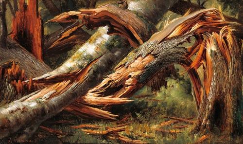 poster hd 60x100cm arte decoração natureza