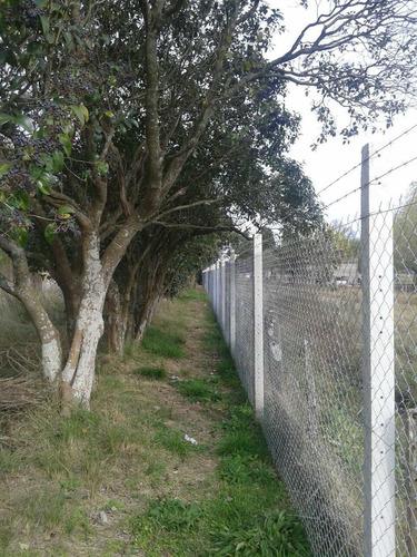 postes de hormigon alambre tejido alambrados perimetrales
