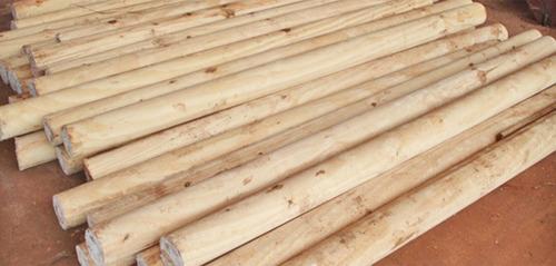 postes madera meolo eucalipto 2.60mts 10/12 cm diám. meolos