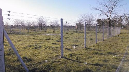 postes recto de hormigon  alambrados  cercos perimetral puas