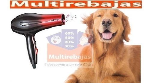 potente secadora para el pelo de canino y felino perro gato