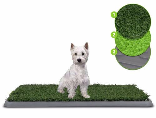 potty patch tapete perros entrenador entrena cachorros perro