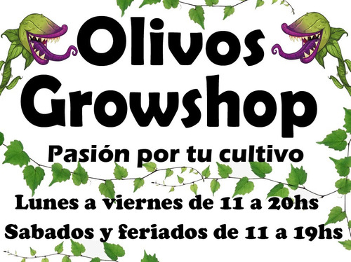 powder feeding short flowering 10gr green house- olivos grow