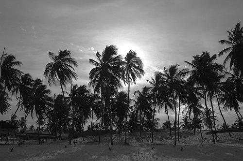 praia de zumbi terreno à venda