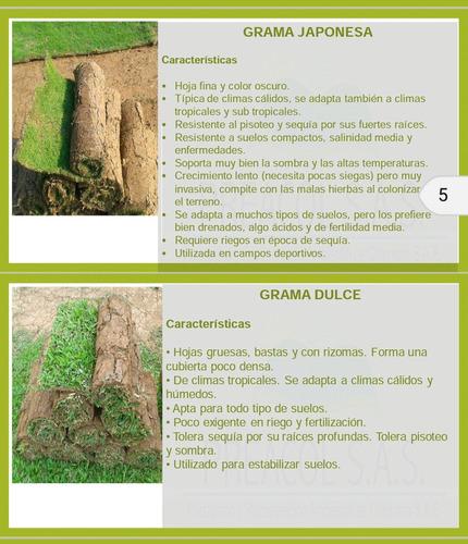 preacol diseño y mantenimiento de zonas verdes.