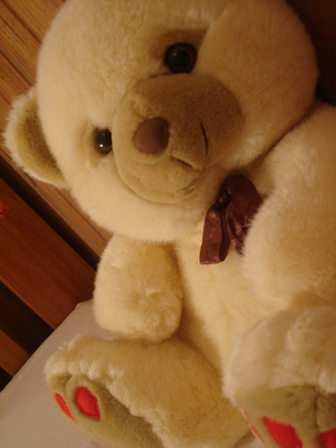 precioso oso de peluche!