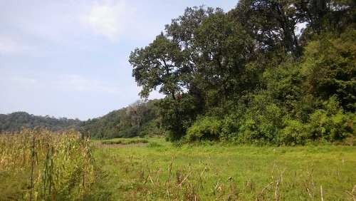 precioso terreno colindante con río