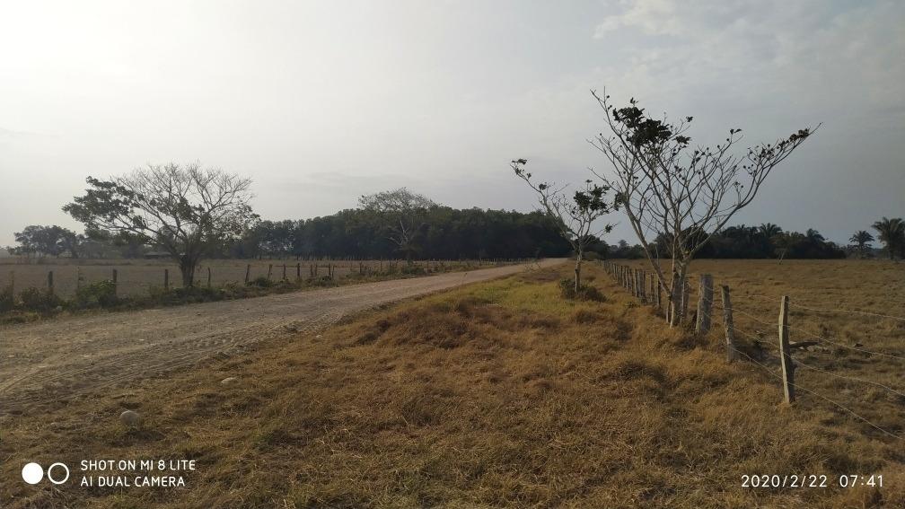 predio 51 has a 22 kilómetros yopal vía morichal - yopitos