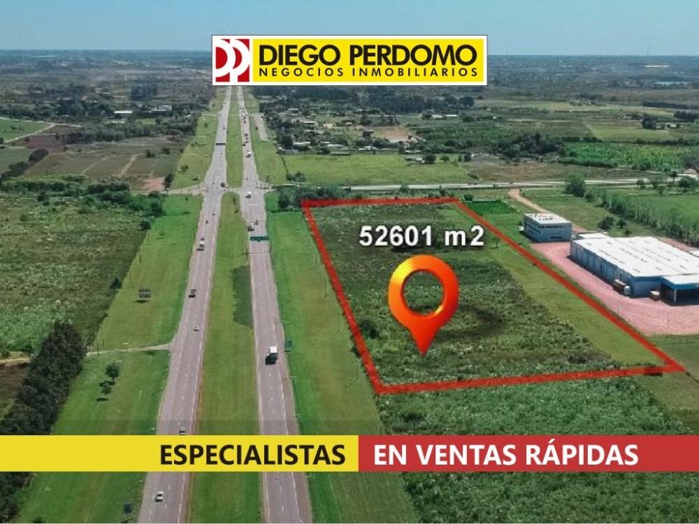 predio de 52601 m² en venta, montevideo