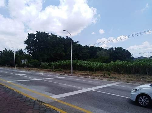 predio rustico ubicado en la autopista manzanillo - colima en el cruce de cortes , predio el higuera