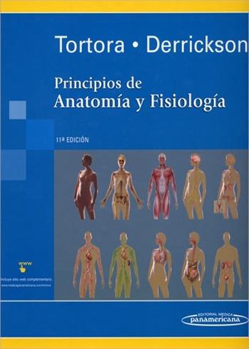 Principios De Anatomía Y Fisiología 11va Edición Gerard Pdf ...