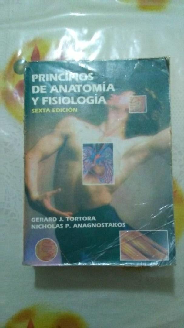 Fantástico Gunstream Anatomía Y La Fisiología Guía De Estudio ...