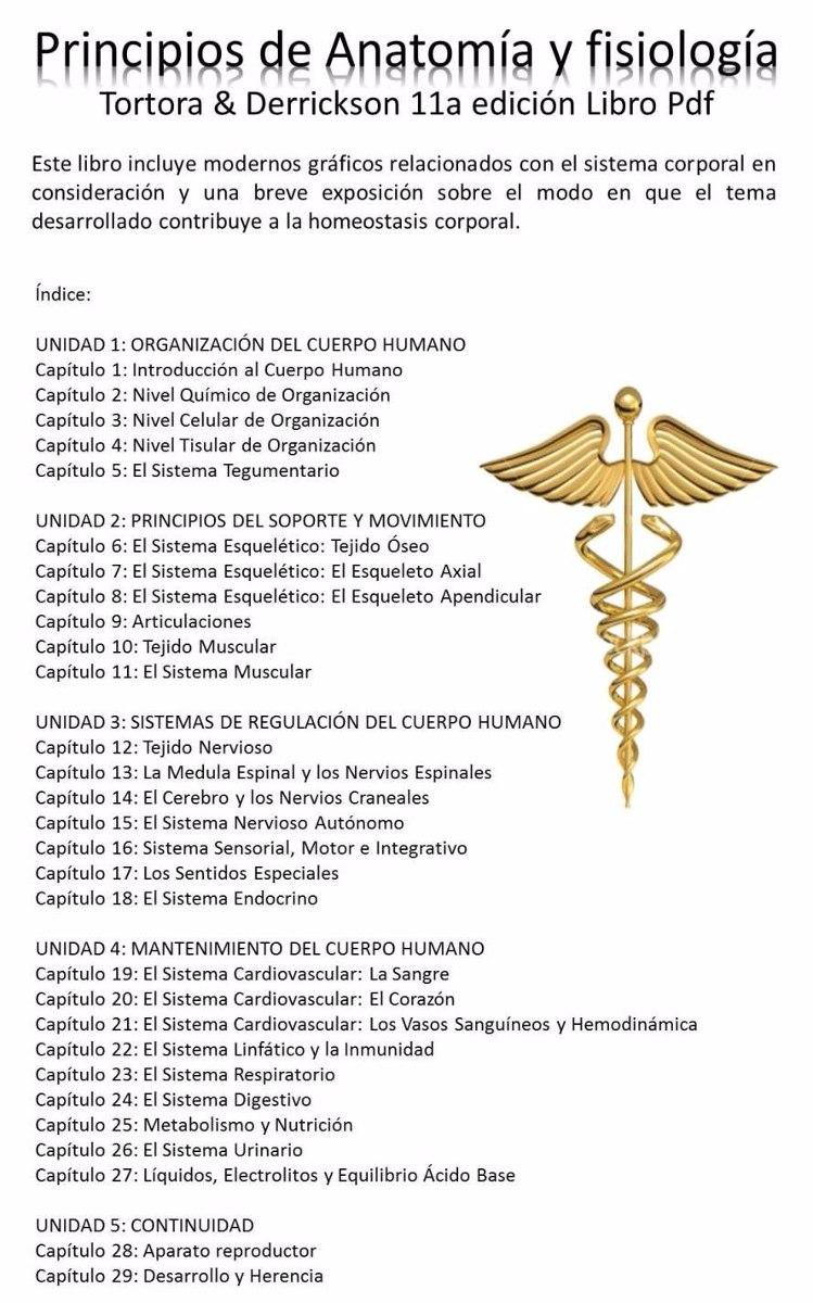 Contemporáneo Capítulo 24 Anatomía Y Fisiología Regalo - Anatomía de ...