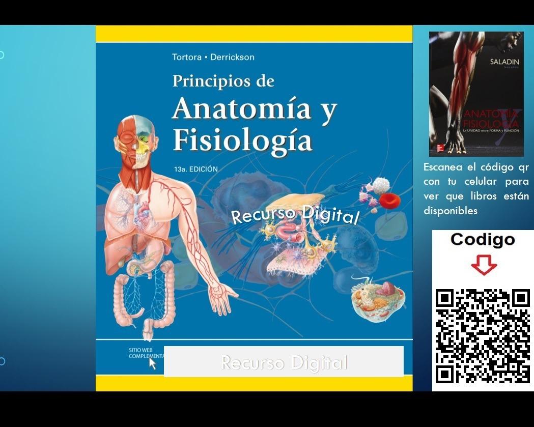 Principios De Anatomía Y Fisiología - Tortora - 13va Edición ...