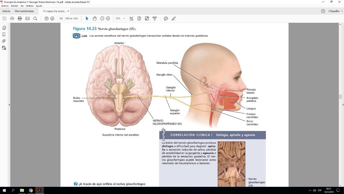 Principios De Anatomia Y Fisiologia Tortora - $ 150,00 en Mercado Libre