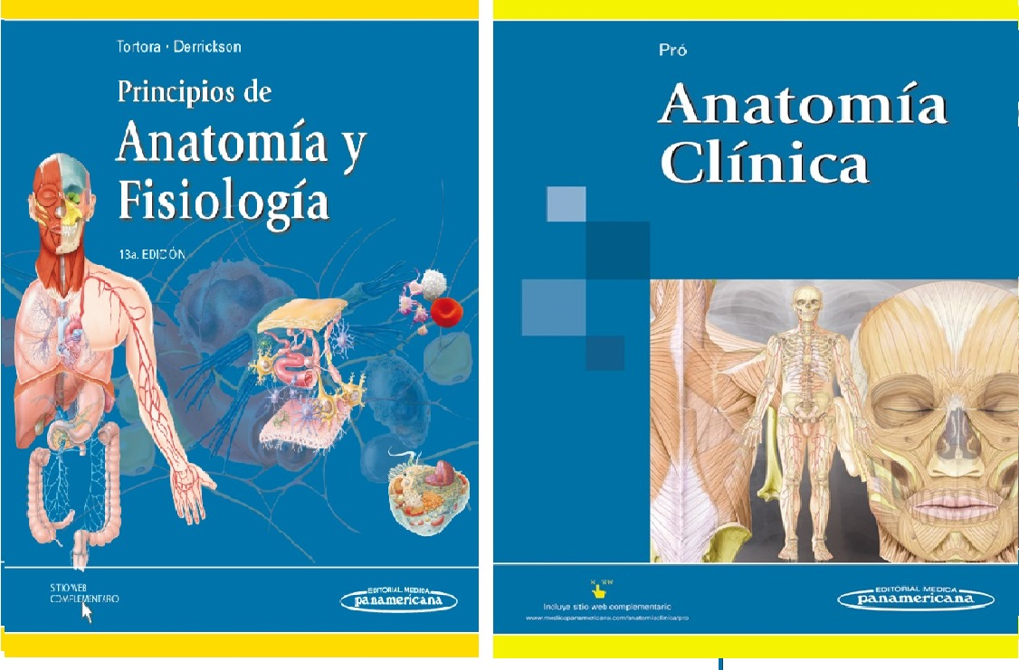 Excepcional Principios De La Anatomía Y La Fisiología Tortora ...