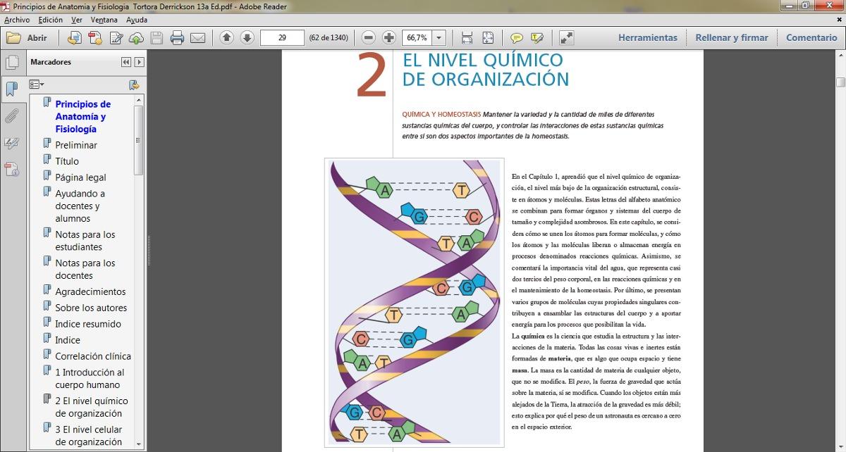 Bonito Principios De La Anatomía Humana Y Fisiología Edición 13 ...