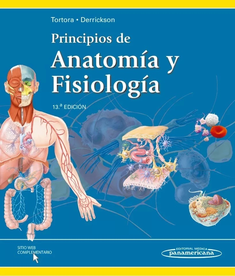 Principios De Anatomía Y Fisiología - Tortora - Libro Pdf - S/ 8,00 ...