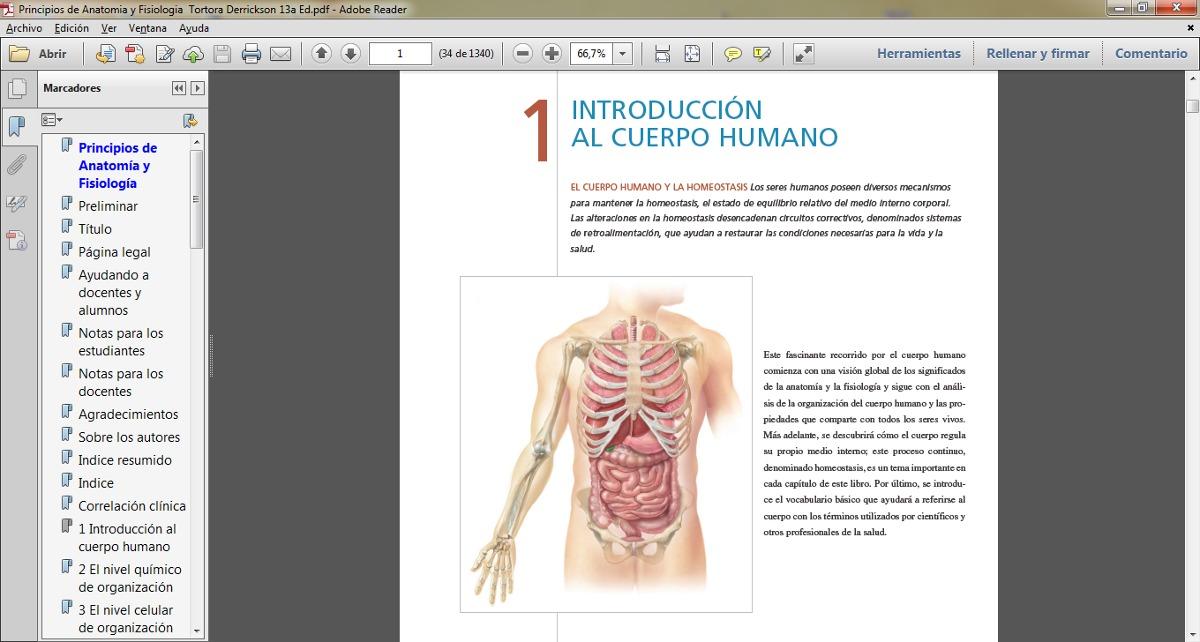Principios De Anatomía Y Fisiología Tortora Pdf - $ 4.000 en Mercado ...