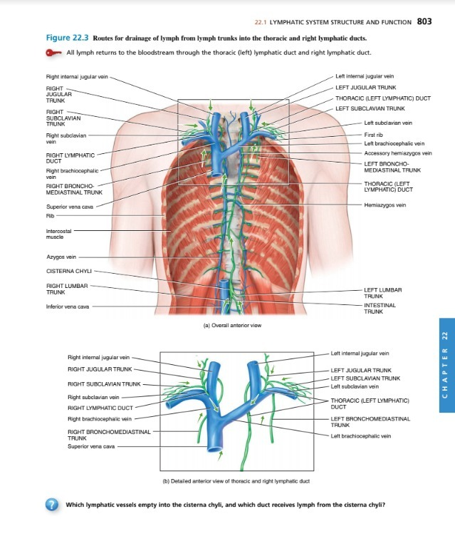 Principles Of Anatomy And Physiology 14th Edition - U$S 1.98 en ...