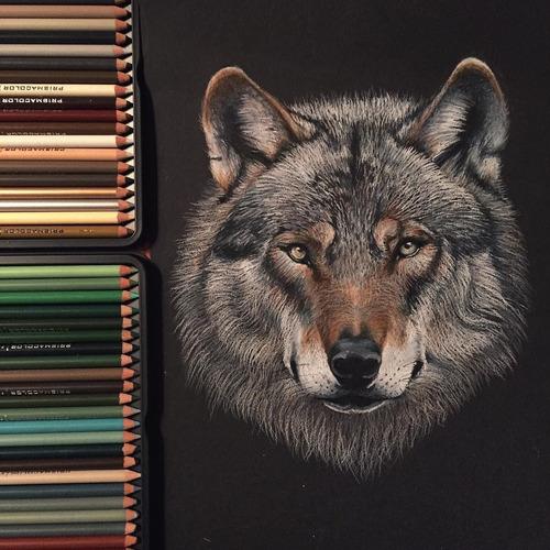 prismacolor premier lápices de colores 72 unidades