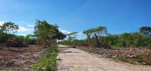 privada real ceiba maya en preventa