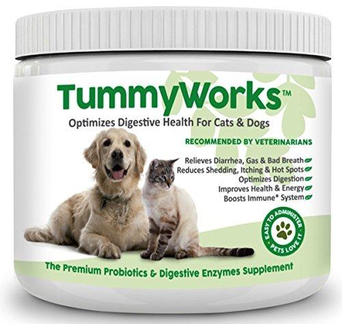 probióticos para perros amp; gatos. el mejor polvo para ali