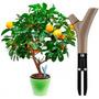 Parrot Flower Power - Sensor Cuidado De Plantas Bluetooth
