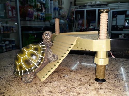 productos para tortugas. alimento, calcio, rampas, focos