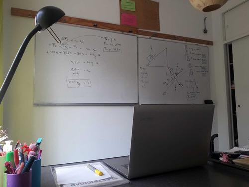 profesora particular biofisica quimica matematica online